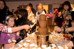 Chocoladefontein het paleis antwerpen (10)
