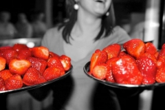 Fruit en zoetigheden chocoladefontein bulk