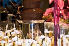 Chocoladefontein het paleis antwerpen (5)
